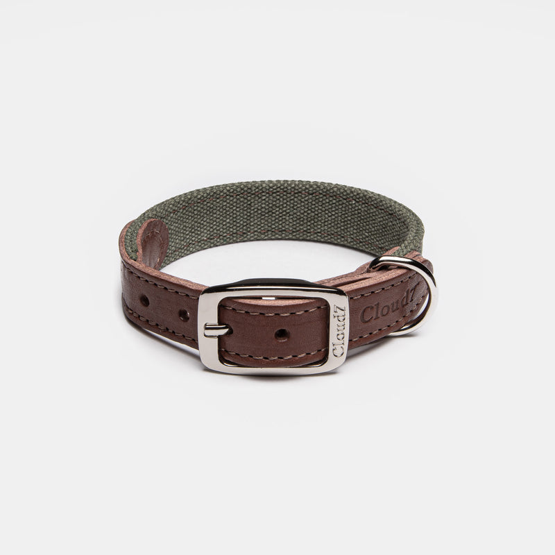 Cloud7: Tivoli Dog Collar in Canvas Leather, Olive
