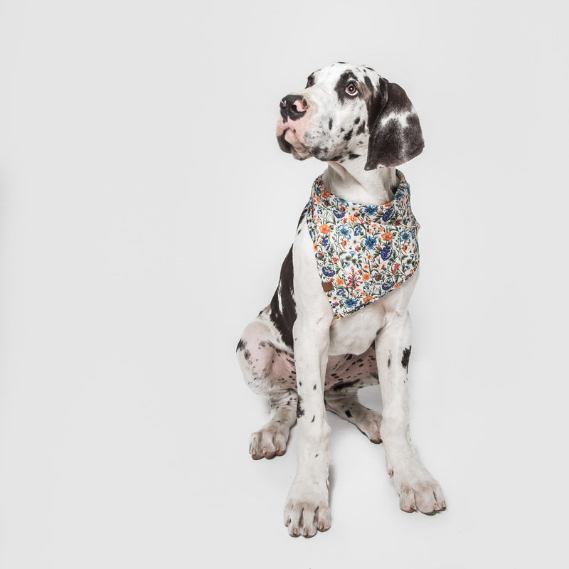 Cloud7 Dog Bandana Cornfield