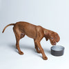 Cloud7 Dog Bowl Ferran food water bowl
