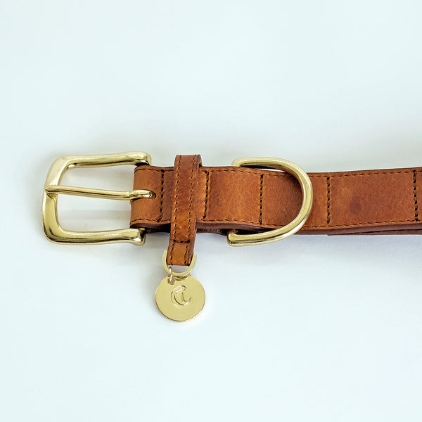 Cloud7 Dog Collar Hyde Park Cognac Leather