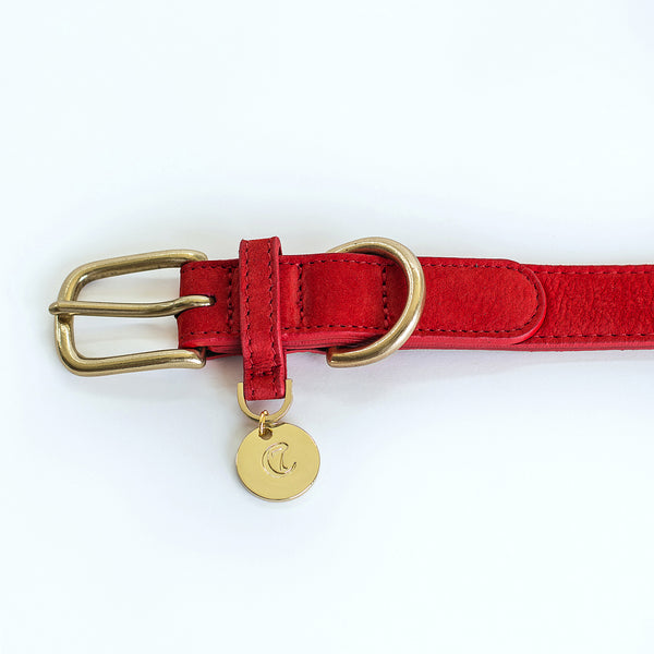 Cloud7 Tiergarten Nubuck Dog Collar in Cherry Red