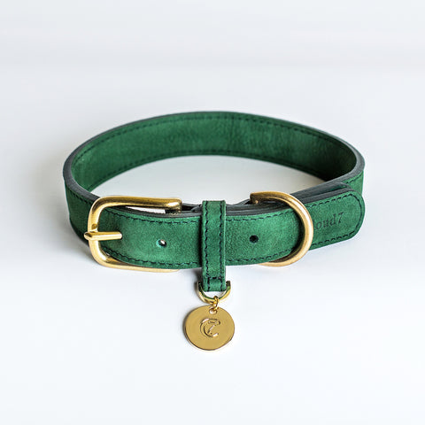 Cloud7 Tiergarten Nubuck Dog Collar in Green
