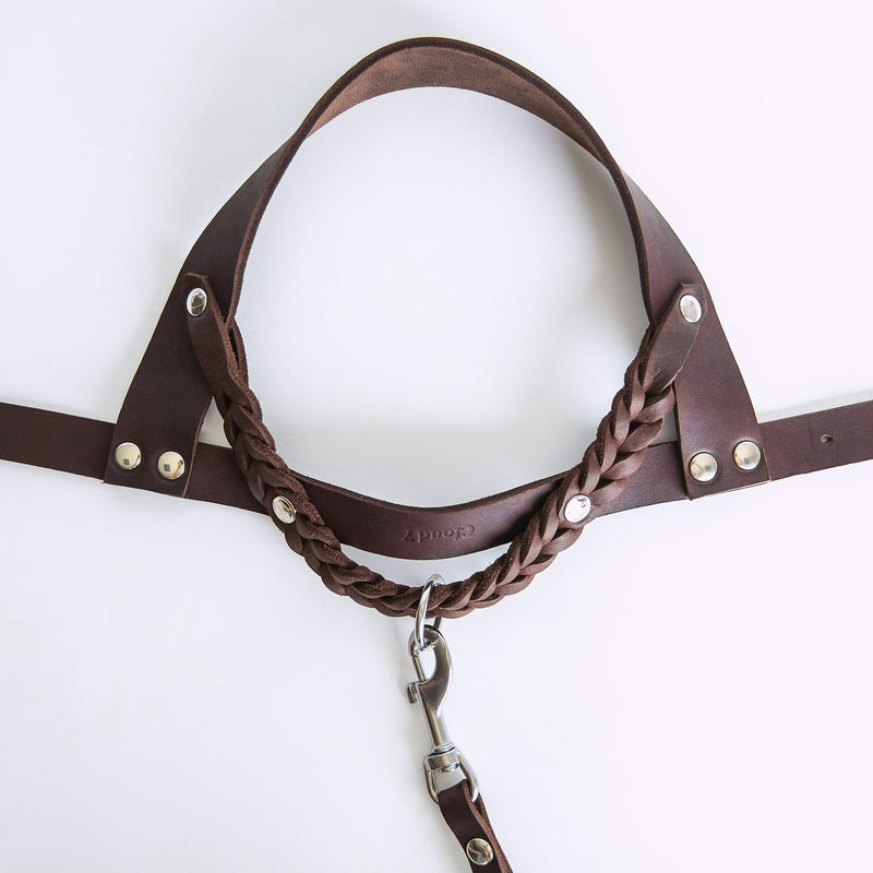 Cloud7: Central Park Saddle Brown Leather Dog Harness