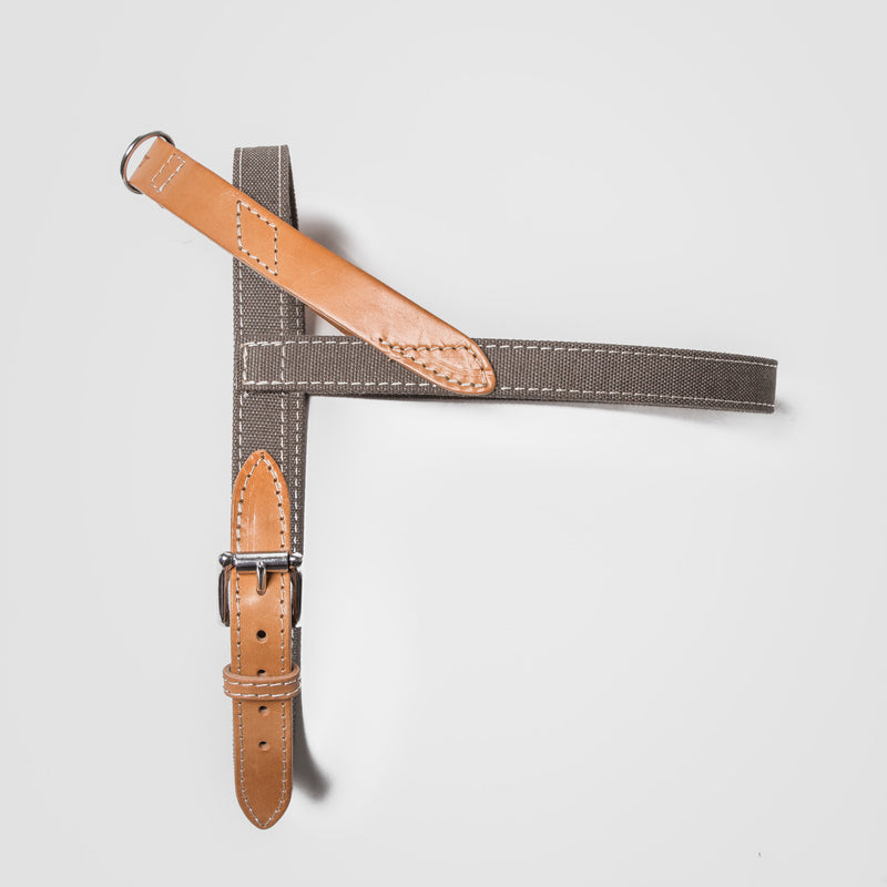 Cloud7: Tivoli Dog Harness in Canvas Leather