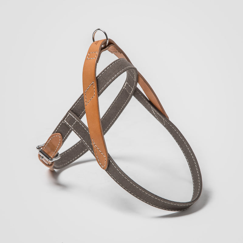 Cloud7: Tivoli Dog Harness in Canvas Leather, Greige
