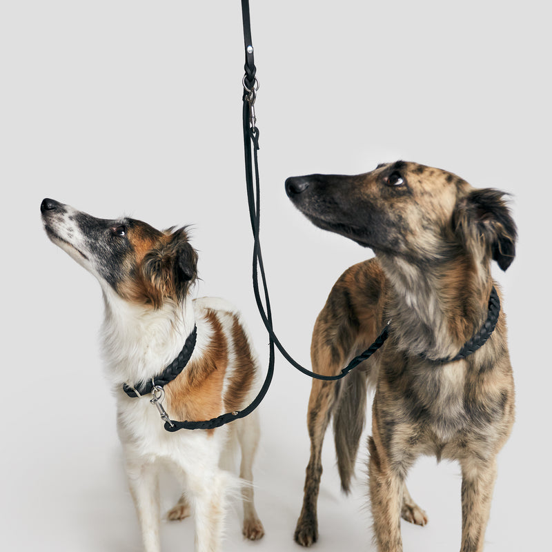 Cloud7: Riverside Park Black Leather Dog Leash Coupler