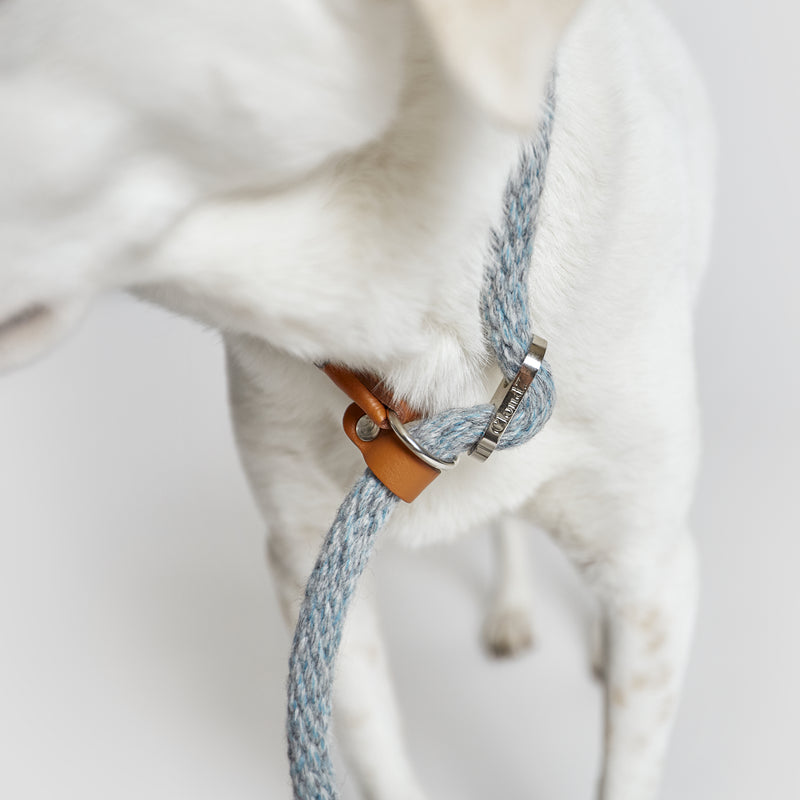 Cloud7: Vondelpark Dog Training Leash in Toffee Sky Blue