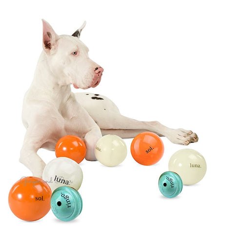 Dog Toy: Cosmos Balls