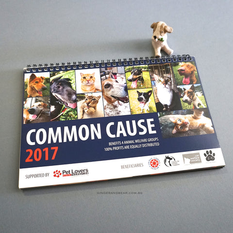 2017 Calendar: Common Cause