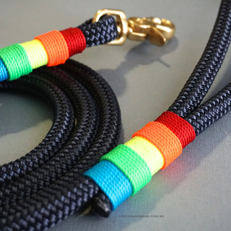 Rugged Hudson Leash: Rainbow on Navy