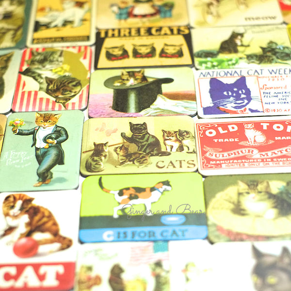 Stationery: Cavallini Vintage Cats Magnets