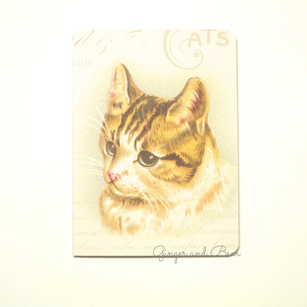 Stationery: Cavallini Vintage Cats Notebook