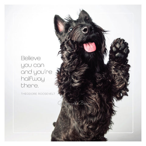 Famous Barks: Scotty's Believe You Can
