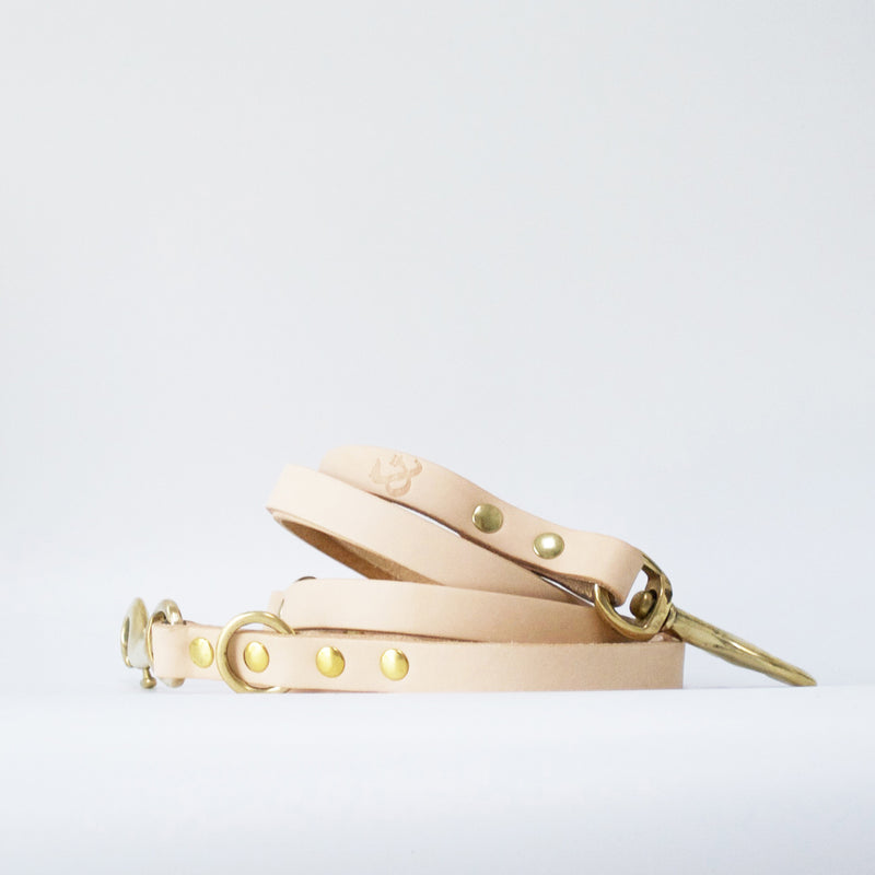 Adjustable Long Leather Dog Lead, Natural