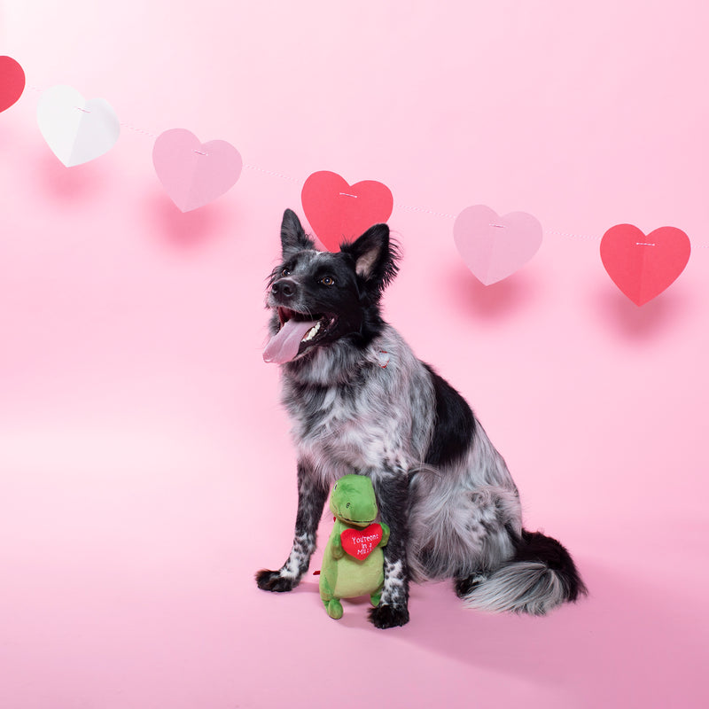 Love To Last A Million Years Rex, Dog Squeaky Plush toy