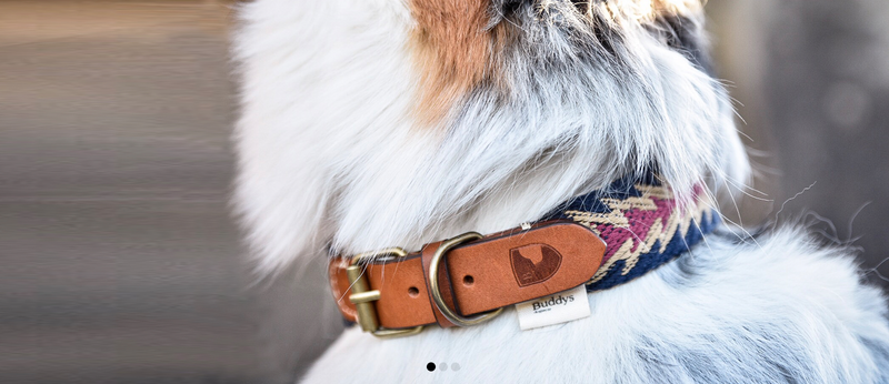 Dog Collar: Peruvian Arrow Blue