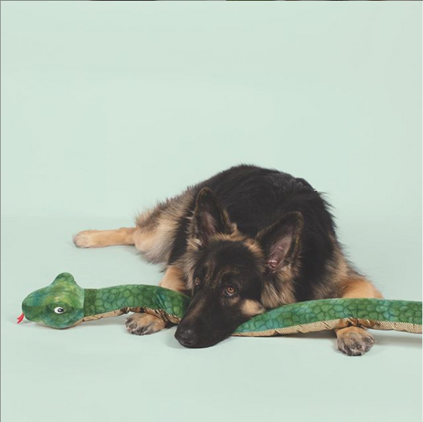 Slither the Snake, Squeaky Plush Dog toy (Large)