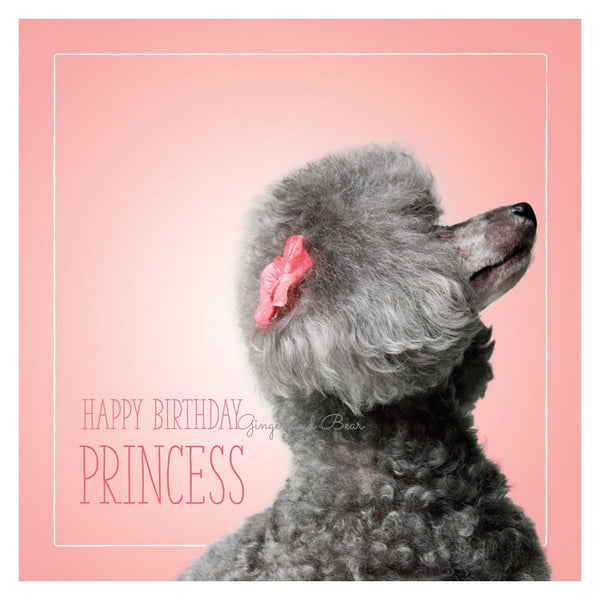 Happy Birthday: Ashley's Happy Birthday Princess