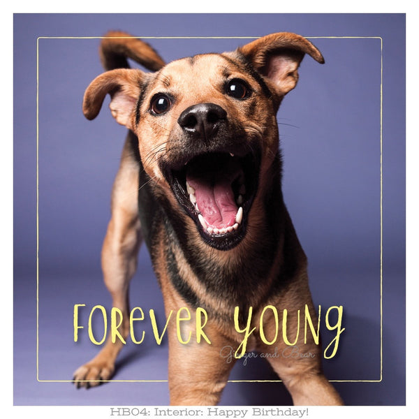 Happy Birthday: Rudy's Forever Young Happy Birthday