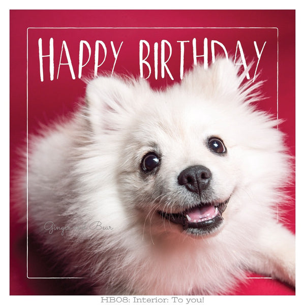 Happy Birthday: Roxy's Cute Happy Birthday