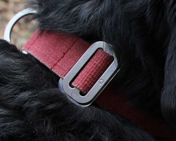 Dog Collar: Weave Cotton