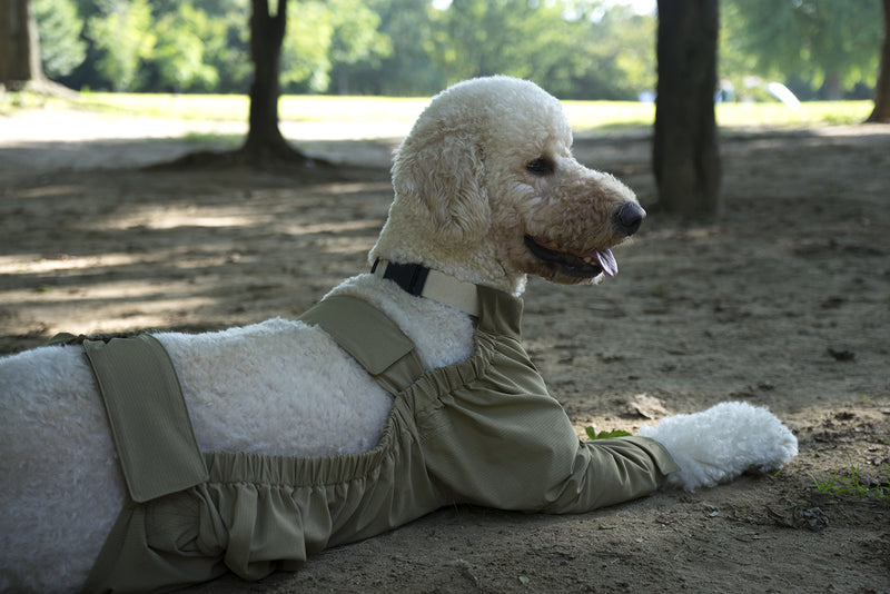 HowlPot Dog Walking Suit
