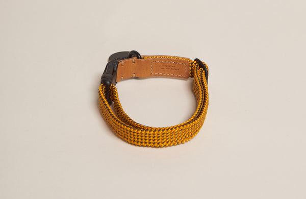 HowlPot We are Tight Ribbon Dog Collar Yellow Jacket
