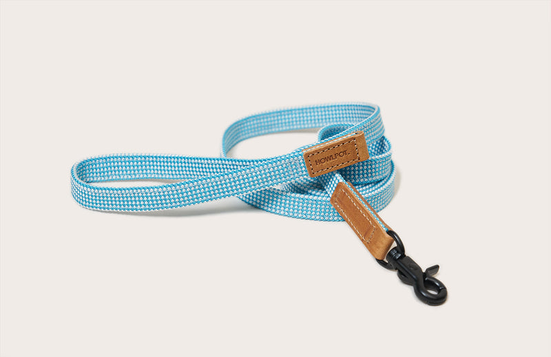 HowlPot We are Tight Ribbon Dog Leash Cloud Bay