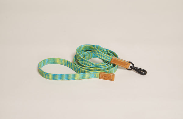 HowlPot We are Tight Ribbon Dog Leash PamTree