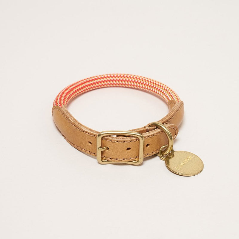 HowlPot We are Tight Rope Dog Collar Cherry Twizzle
