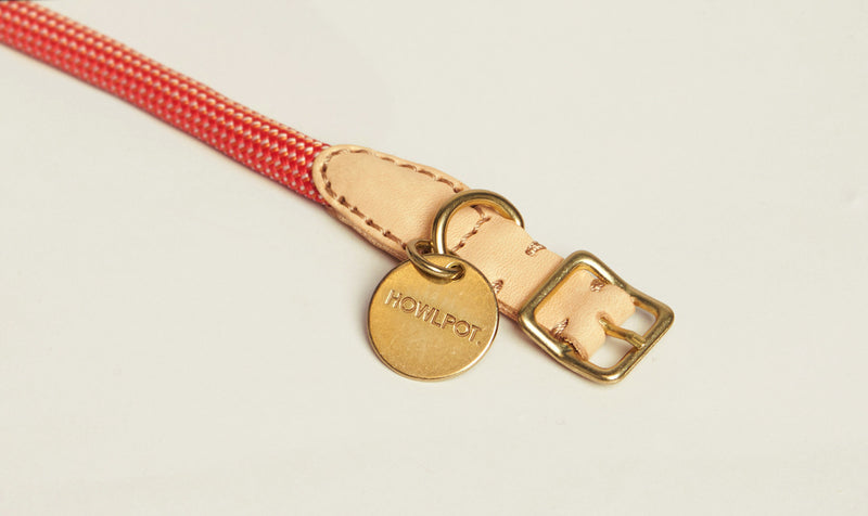 HowlPot We are Tight Rope Dog Collar Coral Aid