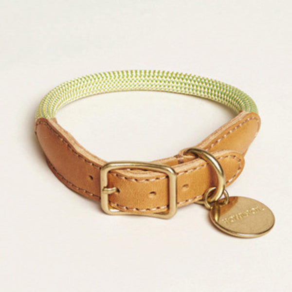 HowlPot We are Tight Rope Dog Collar Green Lemon
