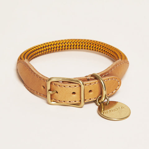 HowlPot We are Tight Rope Dog Collar Yellow Jacket