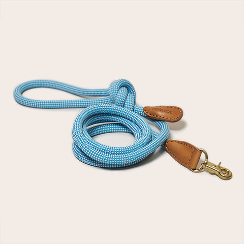 HowlPot We are Tight Rope Dog Leash Cloud Bay