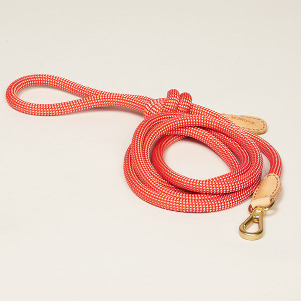 HowlPot We are Tight Rope Dog Leash Coral Aid