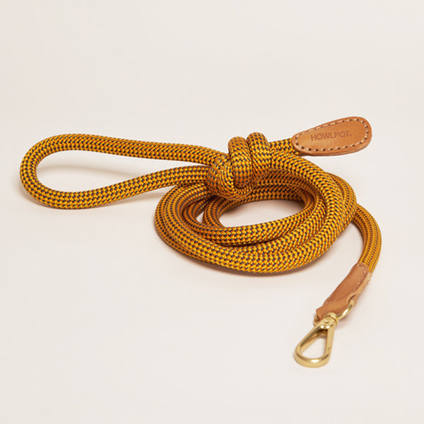 HowlPot We are Tight Rope Dog Leash Yellow Jacket