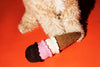 Dog Toy: Hand Knitted Ice Cream Cone