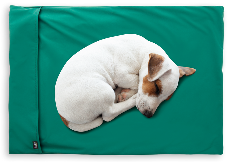 Easy Travel Pad for Dogs and Cats