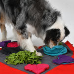 Heart Pad, sniff and search game for Dogs