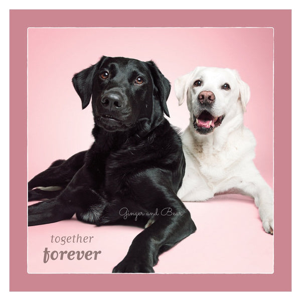 Love: Labrador Retriever Together Forever