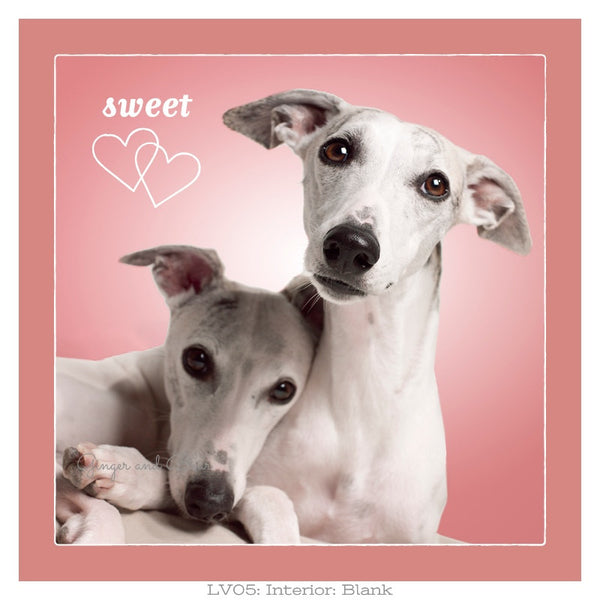 Love: Whippet Sweethearts Love
