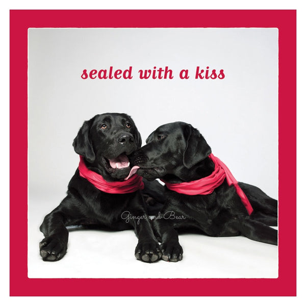 Love: Black Lab Kiss