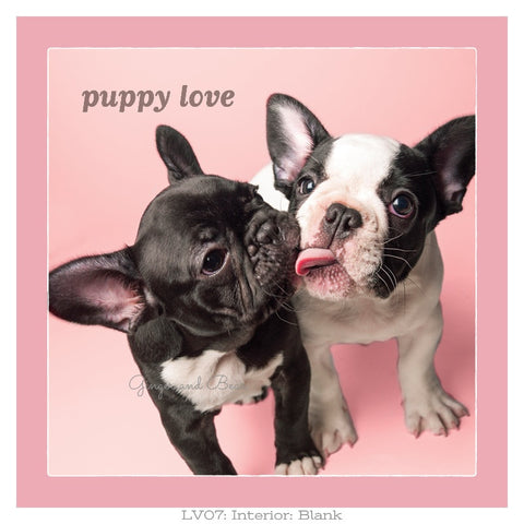 Love: Frenchie Puppy Love