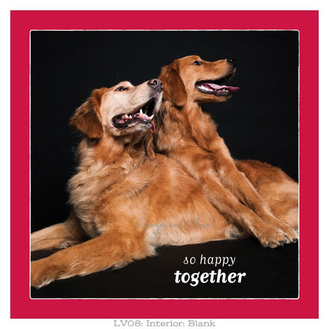 Love: So Happy Together Goldens Love