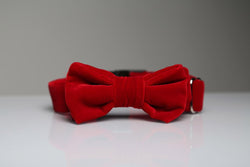 MaxBone Holly Dog Bow Tie