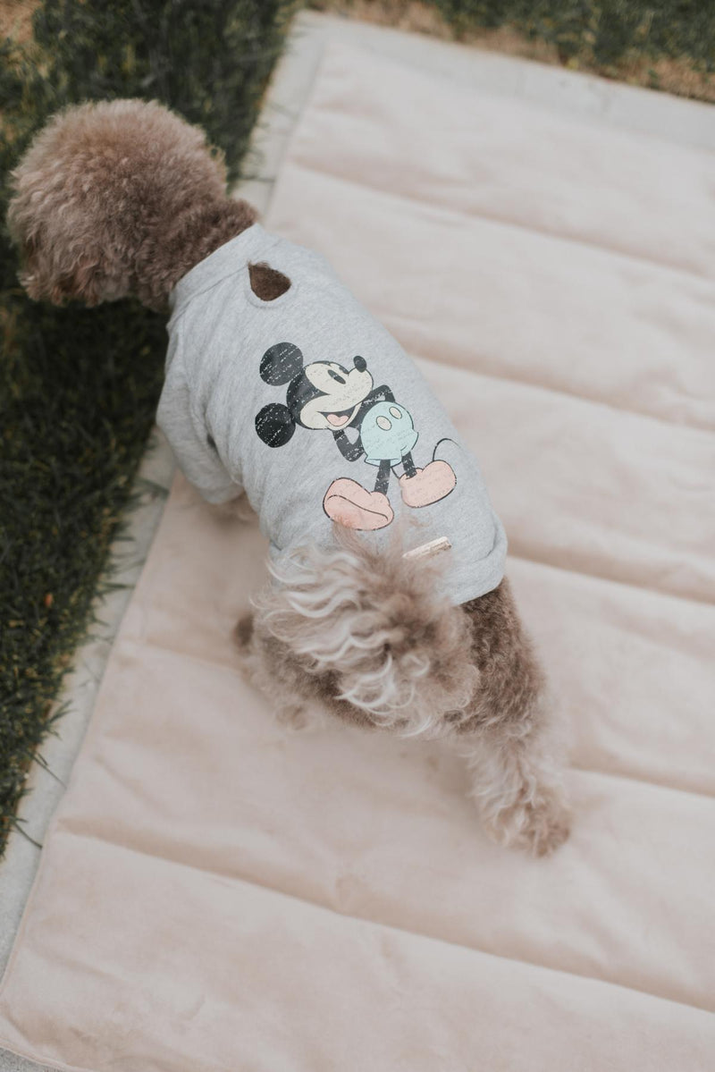 MaxBone Mickey Mouse Classic T-shirt for Dogs and Cats