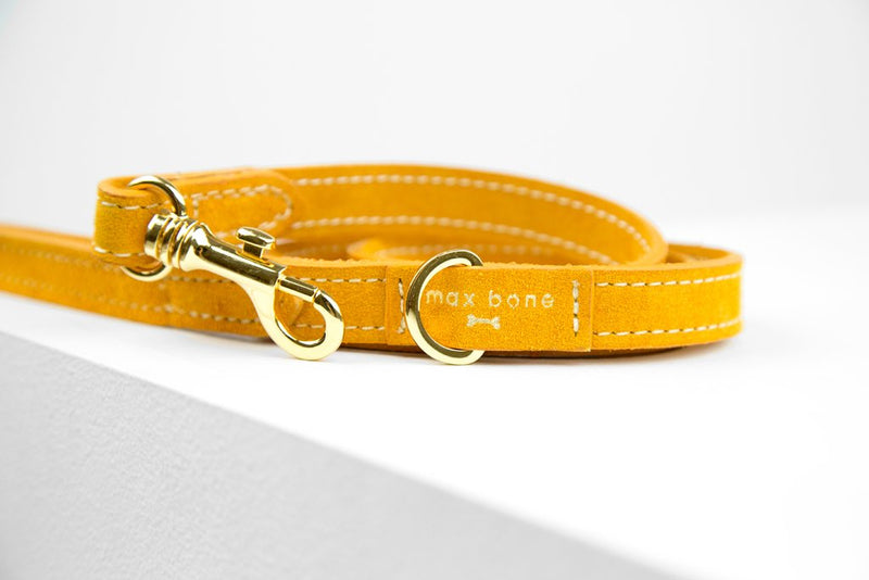 MaxBone Vanessa Dog Leash