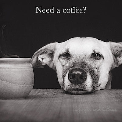 Postcard: Need a coffee?