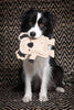 Outback Tails Kevin the Koala Jute dog toy