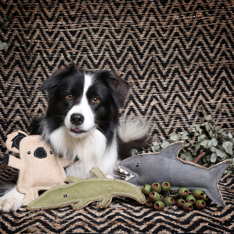 Outback Tails Shark Koala Crocodile Jute dog toy